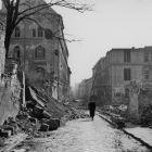 Kiállítás Kelet-Európa nácizmus alóli felszabadításaról